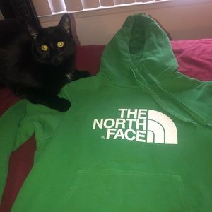 💚⛅️ The North Face Green Hoodie